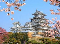 Himeji Catle, Japan