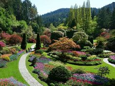 Butchart's famous Sunken Gardens are a sight to behold. Save big with our Butchart Gardens Overnight package. Includes city tour, Butchart Gardens pass, hotel & round-trip transportation from Seattle to Victoria. Most Beautiful Gardens, Amazing Gardens, Organic Gardening, Gardening Tips, Gardening Books, Gardening Supplies, Vegetable Gardening, Buchart Gardens, Stuff To Do
