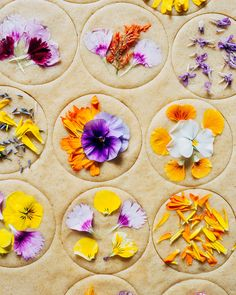 Vegan whole wheat shortbread cookies with three ingredients. Garnished with edible flowers to make a pretty spring dessert. Vegan whole wheat shortbread cookies with three ingredients. Garnished with edible flowers to make a pretty spring dessert. Vegan Shortbread, Shortbread Cookies, Spring Desserts, Spring Recipes, Vegan Sweets, Vegan Desserts, Plated Desserts, Desserts Printemps, Flower Cookies