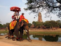 Old, new, and exotic. Photograph by John Wall - Elephant trekking through Ayutthaya the ancient capital of Siam (Thailand)