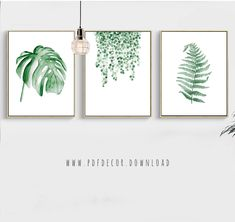 Leaves Prints Set of 3 leaf prints Watercolor Leaves Watercolor Plants, Watercolor Leaves, Watercolor Art, Palm Springs, Decoration, Art Decor, Animals Black And White, Photos Booth, Green Wall Art
