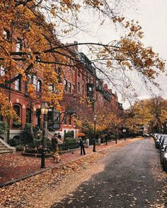 Brimmer Street In Autumn Greeting Card for Sale by Brian McWilliams - Naturbilder Photographie New York, Autumn Cozy, Autumn Rain, Autumn Nature, Nature Nature, Fall Winter, Autumn Photography, Autumn Aesthetic Photography, Halloween Photography