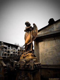 Bella figura de un ángel ataviado al estilo neoclásico. Funeral art Beautiful figure of an angel dressed in neoclassical style