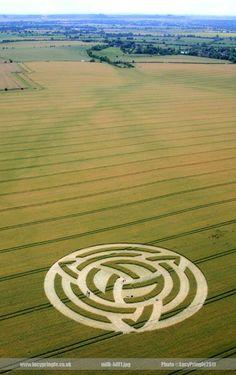Crop circles #cropcircles