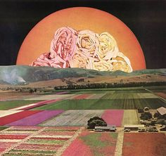 Collaborative collage book project by Jesse Treece
