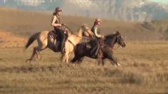 cavalli musica e natura selvaggia HorsePlanet & Leo Royas