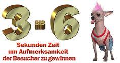 Neuer Blog-Artikel: Erfolgreiche Positionierung durch Content Marketing - http://www.geldschritte.de/?p=8385
