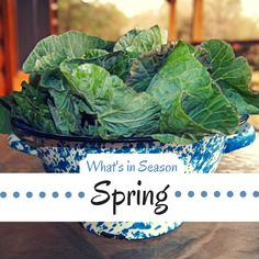 List of fruits and vegetables that are in season in the Spring.