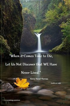 When it comes time to die, let us not discover that we have never lived. Thoreau