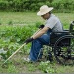 DIGGING FOR THE DISABLED GARDENER