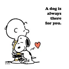A dog is always there for you.
