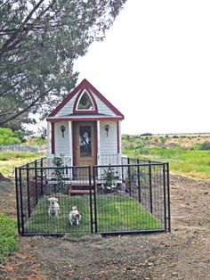 tiny house with tiny fenced yard for 2 tiny dogs :-) I don't have dogs but thought this was a great idea. Pretty and room enough for them to run around and maybe a doggy door in their dog house.