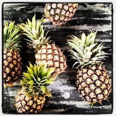 Australian stylist Glen Proebstel's week in pictures, on the Temple & Webster blog - click through for more images.