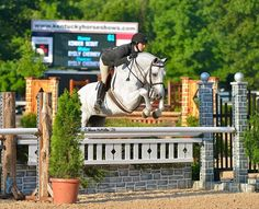 Dream Barn, Hunter Jumper, Show Horses, Farm Life, Jumpers, Equestrian, Inspire, Photography, Animals