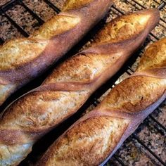 The Breadtopia baguette recipe and video tutorial for almost no-knead baguettes. Easier than you thought, as delicious as you hoped. Sourdough Recipes, Bread Recipes, Baking Recipes, Croissant, French Baguette Recipe, Fruit Bread, Instant Yeast, Pie Dessert, Artisan Bread