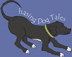 Dog information, training tips, product reviews, news and more