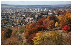 Photo by me. Photo: Diána Rigó - Budapest, Sashegy, in the fall of 2013 #budapest #hungary #photography #sashegy #autumn #fall #colorful #view