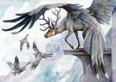 Pegasus elk