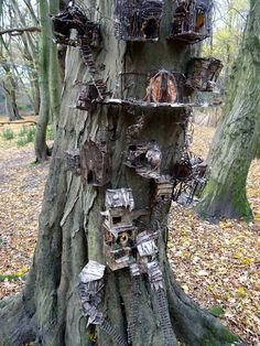 Fairy houses A general idea of what I'm doing to one of my trees Fairy Village, Fairy Tree, My Fairy Garden, Gnome Garden, Fairytale Cottage, Cute Fairy, Fantasy Forest, Fairy Furniture, Gnome House