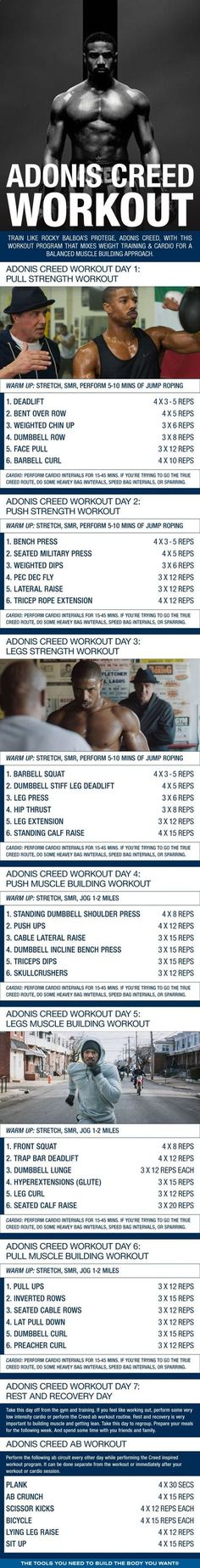 Adonis Creed Inspired Workout Shred Fat like a Contender is part of Workout training programs - Train like Rocky Balboa's protege, Adonis Creed, with this workout program that mixes weight training & cardio for a balanced muscle building approach Wöchentliches Training, Fitness Studio Training, Training Programs, Workout Programs, Strength Training, Boxing Training, Strength Workout, Fitness Workouts, Weight Training Workouts