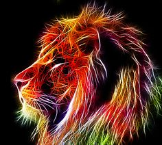 The Heart of a Lion  by ~minimoo64  Digital Art / Photomanipulation / Animals & Plants