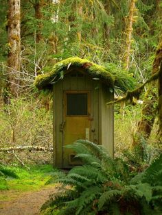 1000 Images About Outhouses On Pinterest Plumbing Tool