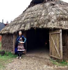 ruca mapuche - Buscar con Google Cabin, House Styles, Google, Home Decor, Architecture, Decoration Home, Room Decor, Cottage, Interior Decorating