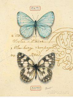 Duet Papillon Poster von Chad Barrett bei AllPosters.de