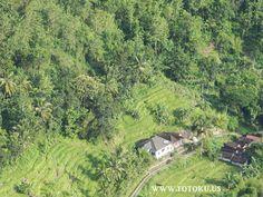 10.34 Perkampungan di lihat dari perbukitan Mangunan Imogiri Bantul Jogjakarta #JOGJA