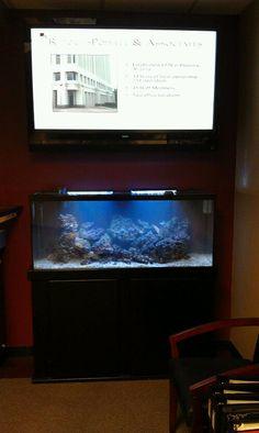75 Gallon Saltwater Reef Aquarium redesigned by Sunset Aquatics