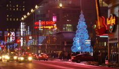 Y&D City Streets, Christmas Tree, Holiday Decor, Home Decor, Teal Christmas Tree, Homemade Home Decor, Xmas Trees, Interior Design, Christmas Trees