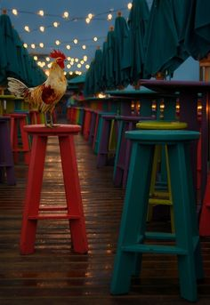A fabulous colorful deck with a rooster!