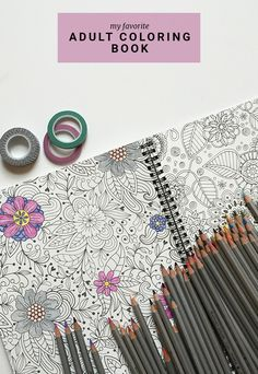 A case for adult coloring books (and those colored pencils!)