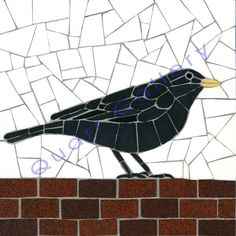 QUARR gallery: Blackbird