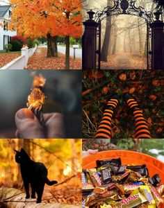 Find images and videos about autumn and Halloween on We Heart It - the app to get lost in what you love. Halloween Look, Samhain Halloween, Halloween Pictures, Spirit Halloween, Holidays Halloween, Halloween Makeup, Happy Halloween, Halloween Decorations, Fall Decorations
