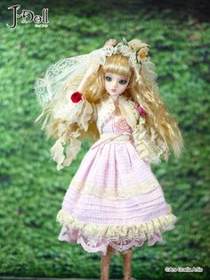 J-Doll Loosterweg Noord $95: In South Holland, Lisse, the Netherlands, Keukenhof road leading to the park. On both sides of the road tulips and hyacinths in spring, And narcissus bloom, the flower parade held annually.