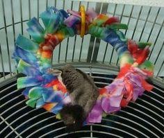 Suz' Sugar Gliders - No Sew Ring Toy
