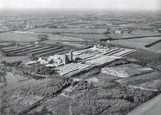CARTIERA BURGO - Mantova 1953
