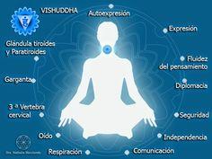 Quinto chakra: Vishuddha ~ La Flor de la Vida - Medicina Integrativa.-  El quinto chakra es el centro de la creatividad desde el pensamiento: Es en este lugar donde logramos materializar aquellas ideas que nacen desde nuestro segundo centro, la creatividad.   Es usual tener bloqueos a este nivel; nos preguntamos en muchas oportunidades: por qué no logro materializar esas ideas que tengo en mente? Posiblemente hay un problema en este centro energético, un bloqueo que no permite fluir…