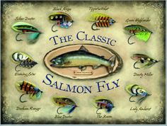 Home Office Decor Vintage Signs Kitchens Salmon Flies Fly Fishing Plates