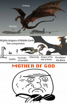 Smaug Human Mighty dragons of Middle-Earth Size comparision. Glaurung Dragon of the Ancalagon Smaug Fire Drake ca of Gondolin War of Wrath the Black MOTHER OF GOD from Items tagged as Dragons Meme Thranduil, Legolas, Gandalf, Jrr Tolkien, Dragons Of Middle Earth, Mother Of Dragons, Das Silmarillion, O Hobbit, Hobbit Funny