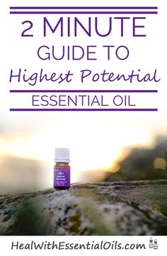2 Minute Guide to Highest Potential Essential Oil - Oils will change your life!