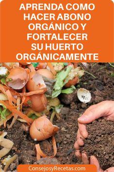 Garden Compost, Vegetable Garden, Small Greenhouse, Growing Veggies, Terrace Garden, Edible Garden, Gardening For Beginners, Garden Inspiration, Agriculture