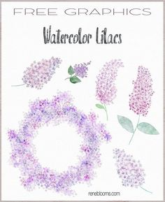 20 wonderful free watercolor clipart collections – Page 5 – Free Pretty Things For You