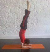 Forearm Stand: How-to, Tips, Benefits (video)