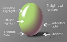 Lighting for illustration, and the five natural lights found in nature artists use to create convincing work with depth and polish. Drawing Lessons, Painting Lessons, Art Lessons, Painting & Drawing, Drawing Tips, Watercolour Tutorials, Watercolor Techniques, Art Techniques, Oil Painting Techniques