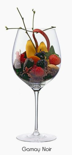 Gamay (red)   Aromas of raspberry, black currant, banana, plum, blackberry, almond, strawberry, orange peel, branch, ivy, black pepper, juniper, clove, star anise, rubber band, leather, iron   Beaujolais & the Loire Valley around Tours, France