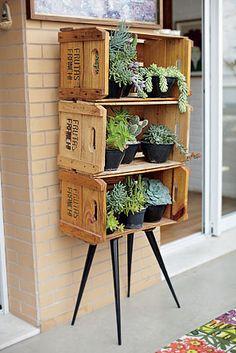 Jeito bonito e criativo de mostrar pequenas plantas ou pequeno herbário!