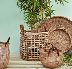 Best way to do it in the simplest way, is by getting new indoor furniture, such as rattan! We have 25 best rattan indoor planter ideas Dulux Green, Estilo Tropical, Deco Nature, Plant Basket, Bamboo Basket, Bamboo Planter, Rattan Basket, Decoration Plante, Ornamental Plants