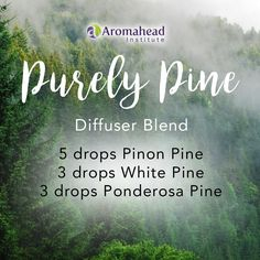 This diffuser blend brings the aroma of the forest into your home. It's both uplifting and refreshing!